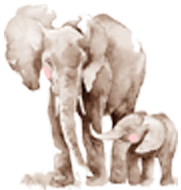 Poem for All Captured, Abused and Mistreated Elephants: What Would You Do if You Knew …