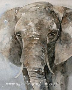 sad elephant, poem for all captured, mistreated and abused elephants