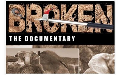 Save Nosey Now Holiday Challenge – Help Us to Create Broken, a Film that Will Open Hearts and Eyes